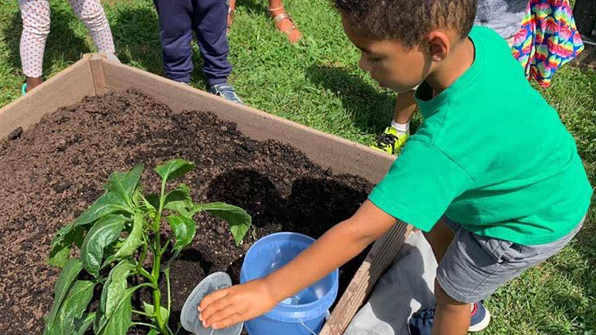Small boy planting a garden at a Montessori School program.